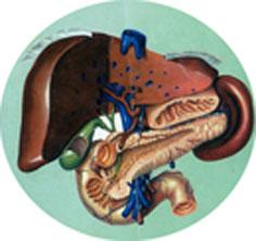 диета 4в при заболеваниях кишечника